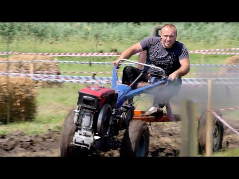 linvideozp: Тракторфест-2019, перегони на мотоблоках!