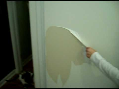 James West Painting Watch The Paint Peel Off The Door Youtube