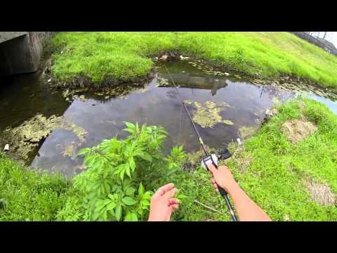 Spring Bass fishing (Spawning Bass) Bayou Bass 720p HD
