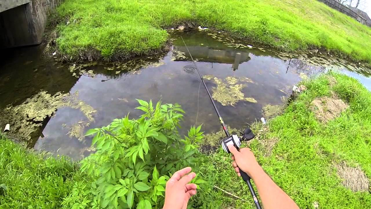 Spring bass fishing spawning bass bayou bass 720p hd doovi for Bed fishing for bass