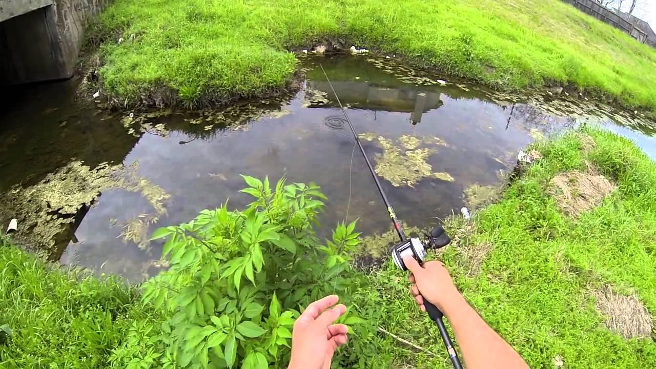 Spring bass fishing spawning bass bayou bass 720p hd doovi for Spring bass fishing