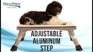 RecPro Aluminum RV Step