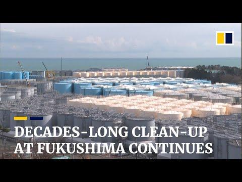 Nearly a decade after tsunami, clean-up continues at Japan's Fukushima nuclear plant
