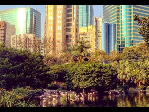 Kowloon Park in Hong Kong 2017