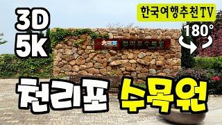 180° 3D VR 천리포 수목원 봄풍경 - Cheo…