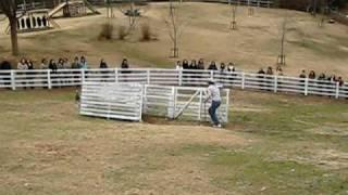 神戸市営六甲山牧場で行われている「羊の追い込みショー」。ニュージー...
