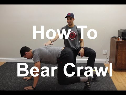 How to Bear Crawl