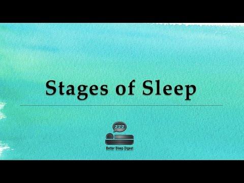 Stages of Sleep - Sleep Cycles