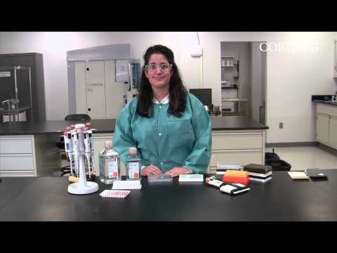 Preventing Edge Effect In Microplates