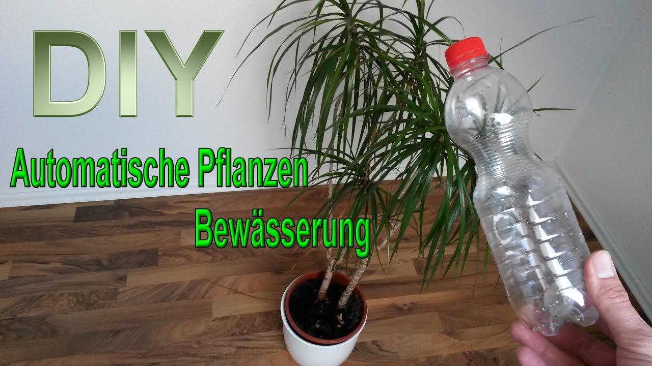 Automatische Pflanzenbewsserung aus PET Flasche selber