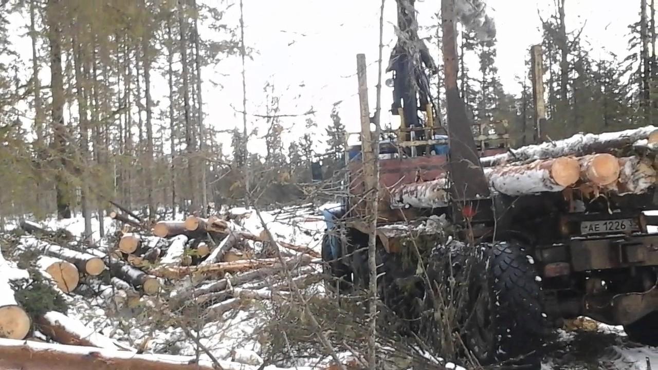 Сортиментовоз-лесовоз МАЗ с гидро-манипулятором СФ-85С и прицеп .
