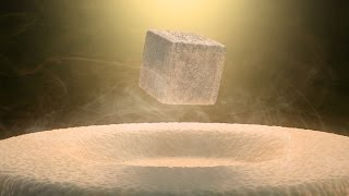 Quantum Levitation: A Rare Look at Quantum Mechanics in Action