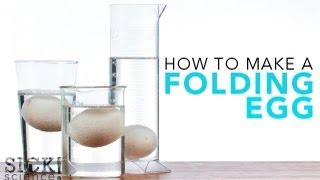 How to Make a Folding Egg - Sick Science! #121