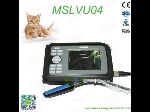 Portable Veterinary Ultrasound MSLVU04 Video