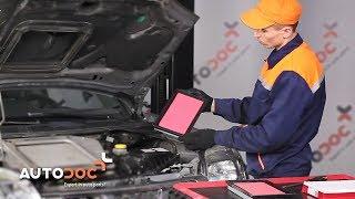 Onderhoud Nissan Interstar Van - instructievideo