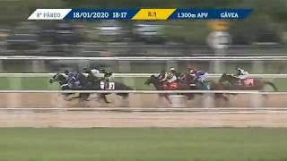 Vidéo de la course PMU PREMIO LARANJEIRAS (INTERNET)