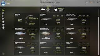Русская Рыбалка 4 (Russian Fishing) Уклейка на Вьюнке