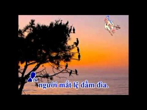 karaoke YEU LAM   thieu giong nam )