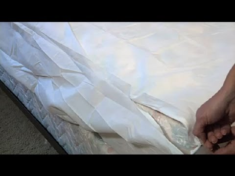 Pillow & Mattress Protectors for Allergy Relief : Allergy-Proofing Your Home