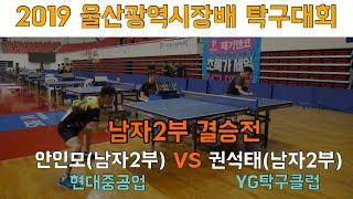 2019 울산광역시장배 남자2부 결승 안인모(현대중공업) vs 권석태(YG탁구클럽) [ 탁구/table tennis ]