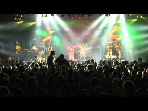 Afro-Latino Festival 2011 Bree (B): Jimmy Cliff - Reggae Night - live