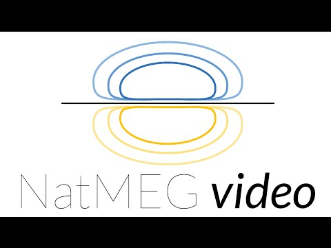 NatMEG lecture: Connectivity analysis in MEG and EEG: metrics and issues