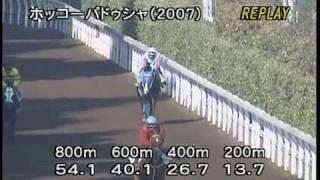 [調教] 081203 ホッコーパドゥシャ 「鳴尾記念」前追い切り