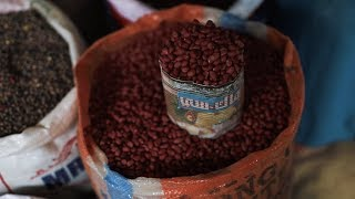 Towards a #ZeroHunger future with Africa's forgotten treasures