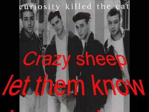Curiosity Killed the Cat Misfit (video with lyrics)-HQ