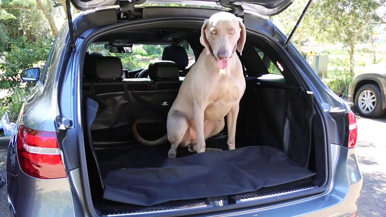 tully suv boot liner from running dog - youtube
