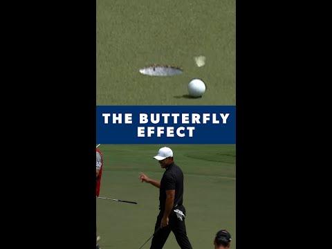Koepka: The Butterfly Effect 🦋
