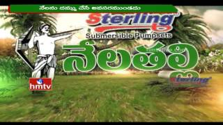 Conventional Agriculture Tips for Paddy | Natural Farming | Nela Talli | 15-06-16 | HMTV