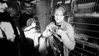 Maryland SPCA and the U.S. Navy