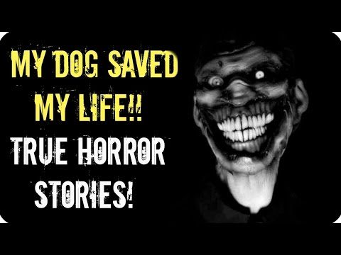 7 TRUE unsettling HORROR stories! | Intruder/Camping/kidnap| why everyone needs a Dog!!