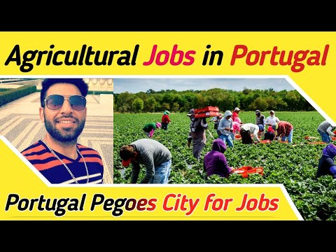 Agricultural Jobs in Portugal for Desi Community - Portugal Pegues City