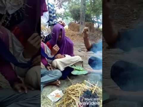 Bhojpuri video new Fulsather songs