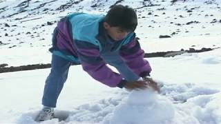 HAWAIIAN SNOW. DID YOU KNOW IT SNOWS IN HAWAII? TOURISM, FUN, ADVENTURE.