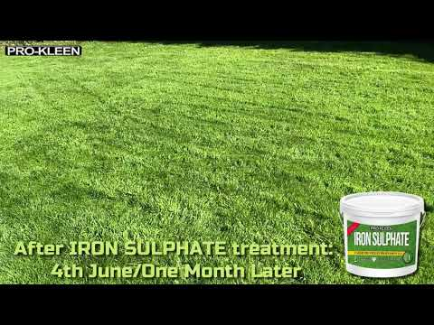 Pro-Kleen Iron Sulphate for Greener Grass & Harder Turf 2.5KG