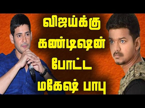 I Am Equal To Actor Vijay : Mahesh Babu Shocking Statement : They Both Are Going To Act Together