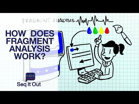 How does Fragment Analysis work? – Seq It Out #3