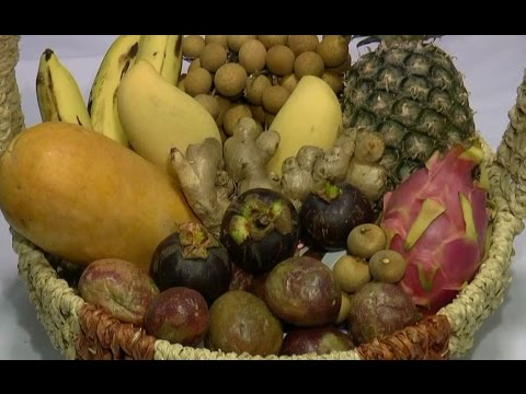 Target Agriculture: 100% Organic Fruit Products From Asia (full version)