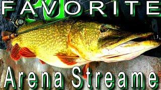 Favorite Arena Stream, реальний огляд, пості тесту. Для тих хто любить риболовлю
