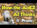 How the AoE2 AI Thinks (ft. Promi)