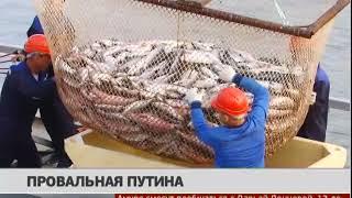 Провальная путина. Новости 13/12/2018. GuberniaTV