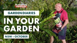 Gardening in October | NSW | Bunnings Garden Diary
