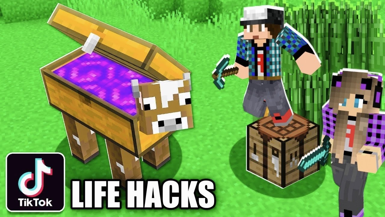 Απίστευτα TikTok Life Hacks Minecraft Famous Games @Let's Play Kristina