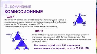 Маркетинг план Jeunesse  Тренинг Ирины Ледневой