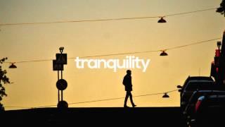 Dua Lipa - New Love (Jarreau Vandal Remix)