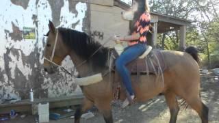 Riding beautiful horse