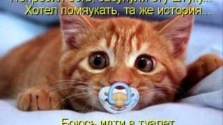 Приколы про животных с надписями
